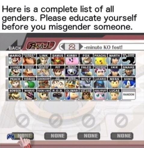 Text - Here is a complete list of all genders. Please educate yourself before you misgender someone. BACK BRL MARIO LINK SAMUS KIRBY FOX PIKACHU MARTH 2 minute KO fost! BAPIT FALCO LUIGI KE WOLF LUCARIO NESS SONIC BOWSER WARIO NOOH NONE MONE NONE NONE