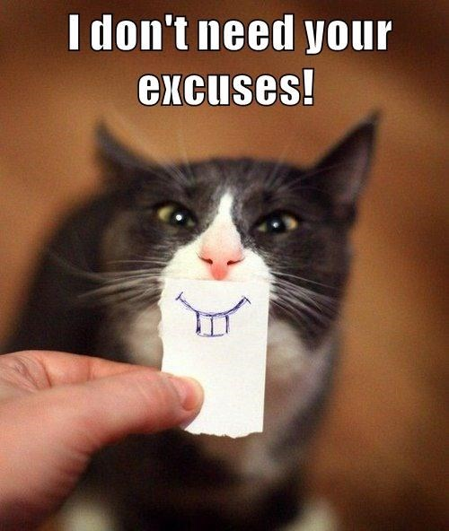 Cat - I don't need your excuses!