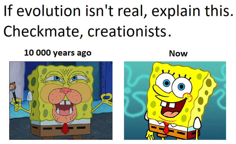evolutionary dank meme of sponge bob