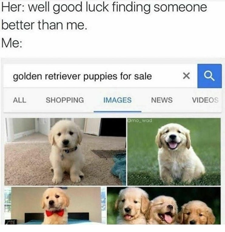 Funny breakup meme where girl tells guy to find someone else as good as her, guy googles golden retrievers for sale.