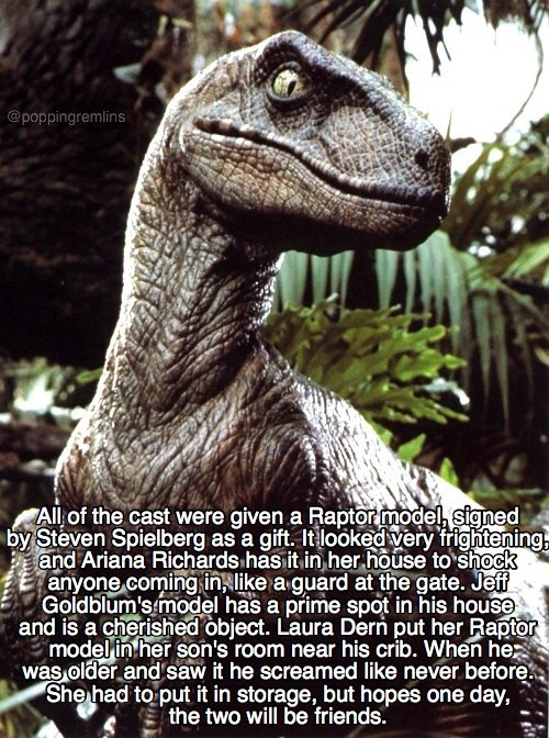 Meme about the Raptor Models from Jurassic Park