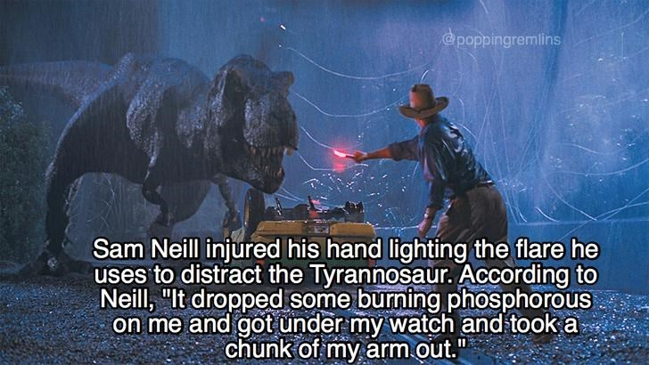 Meme fun fact about how Sam Neill burned his hand in the flare scene