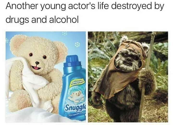 funny meme comparing snuggles and wicket from star wars, saying wicket has done a ton of drugs.