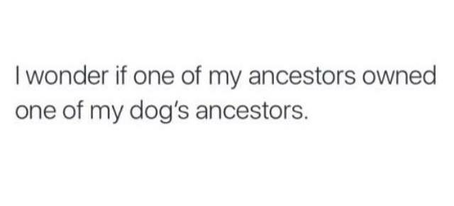 Text - Text - I wonder if one of my ancestors owned one of my dog's ancestors.