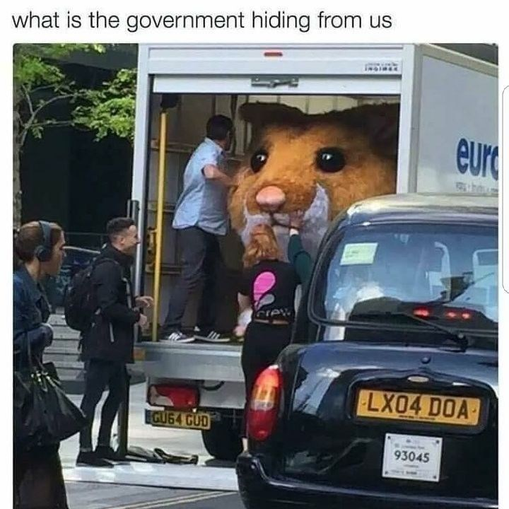 Funny meme about the government hiding stuff from us.