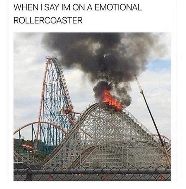 Funny meme about being on an emotional rollercoaster that is one fire.