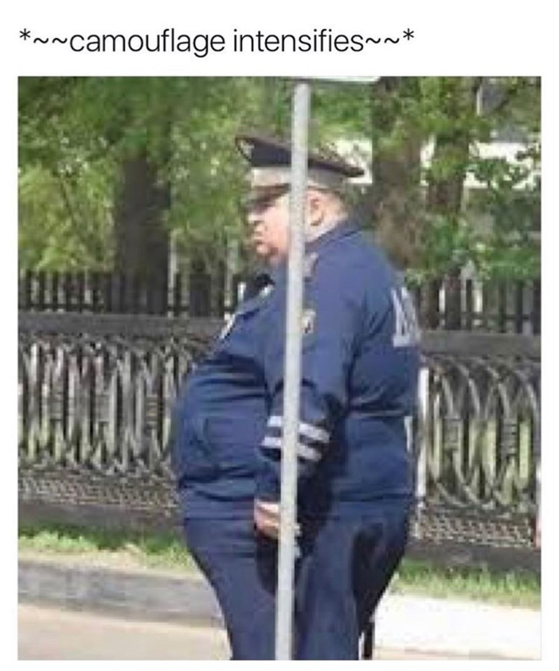 Meme making fun of a fat cop as if he can hid behind that pole.
