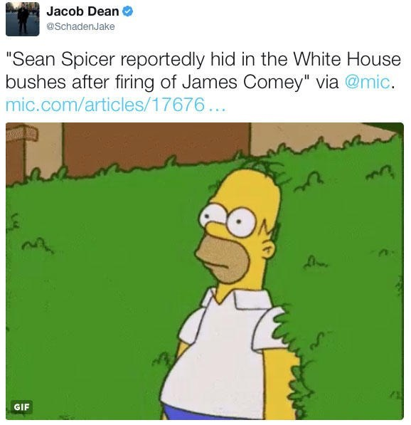 Jacob Dean posts Homer Simpson hiding in the bushes meme as it comes out that Sean Spicer hid in the bushes after firing James Comey
