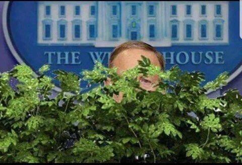 Funny meme of Sean Spicer hiding in the bushes