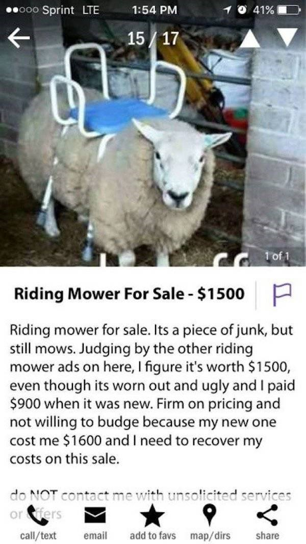 Craigslist listing for a riding mower that looks like a sheep with a saddle attached.