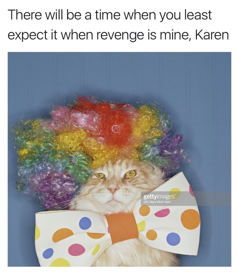 Stock image of a cat with clown wig and silly bow tie and typical threatening clown post about revenge in the caption