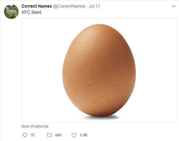 Egg - Correct Names @CorrectNames Jul 17 KFC Seed Bowl of petunias 649 17 1.9K