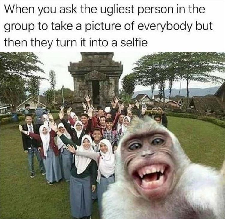 Meme of monkey taking a group selfie