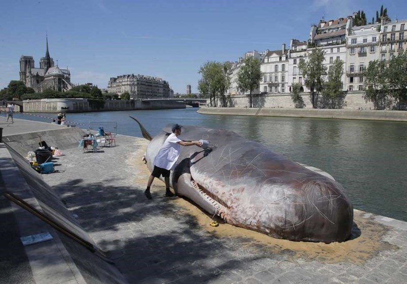 sculpture of sperm whale on banks of the Seine river