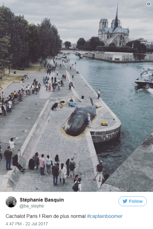 Paris tourists taking pics of the beached whale