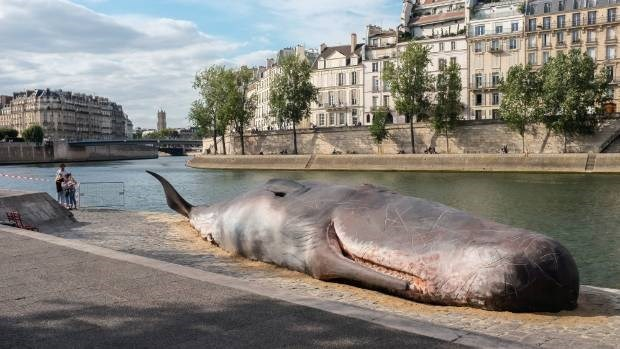 Wide angle shot of the dead sperm whale sculpture in Paris river