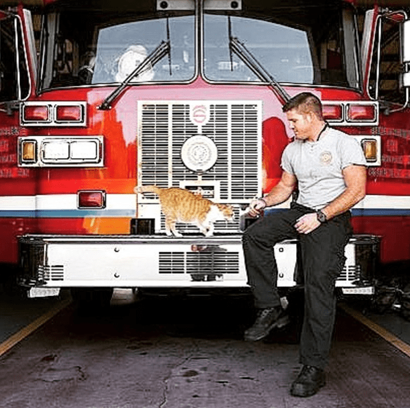 fireman playing with Flame the cat on the fire truck