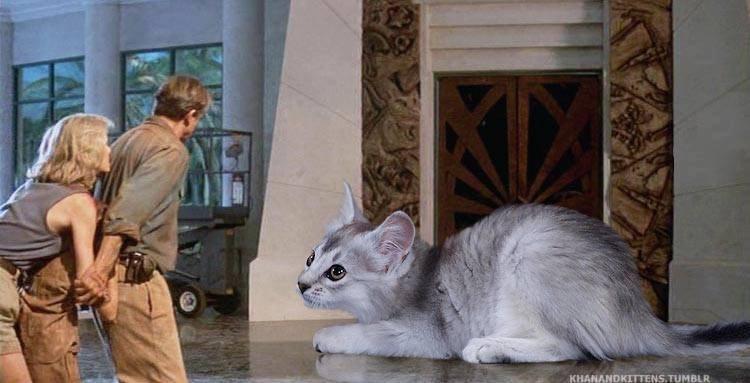 Kitten in the atrium in Jurassic Park scene