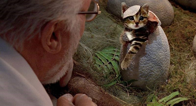 Jurassic park dinosaur hatching scene in which cat is coming out of the shell