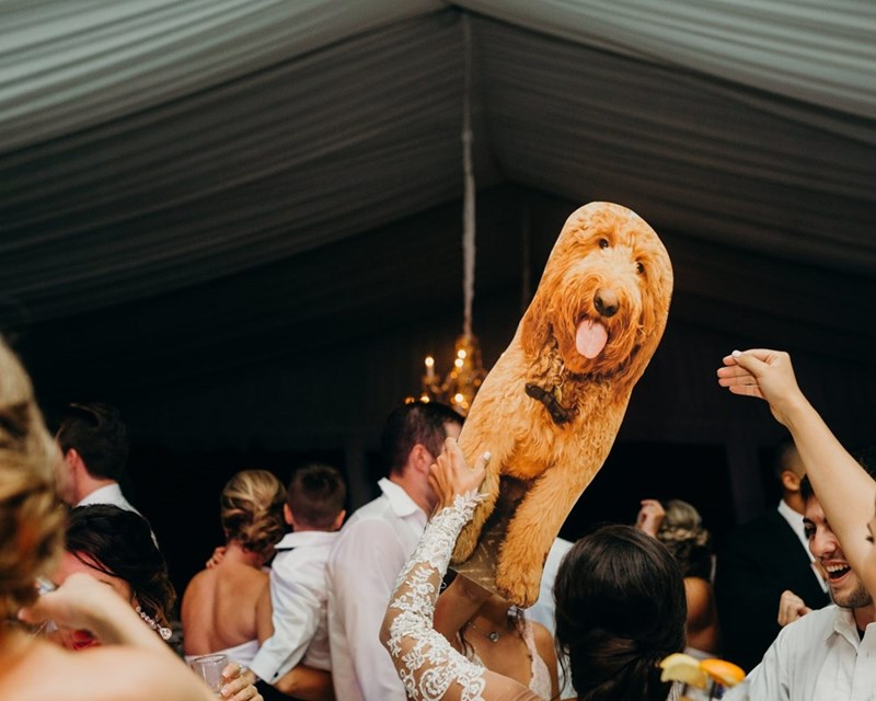 Dancing with the dog at the wedding - cardboard dog cutout.