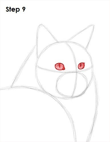Cat - Step 9