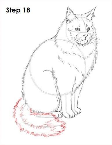 Cat - Step 18
