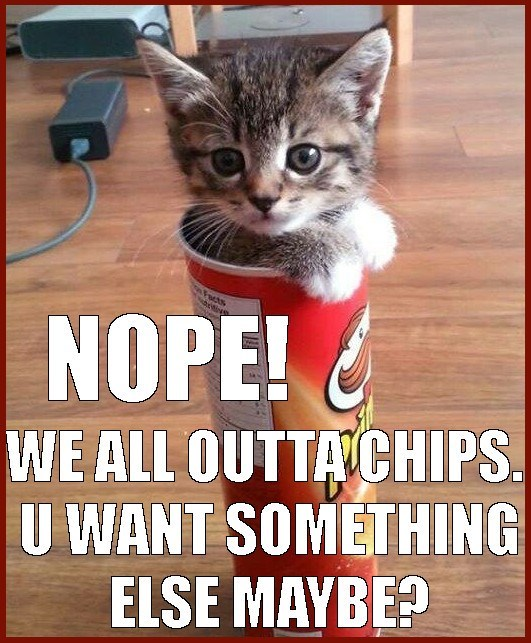 cat in a pringles can confirming that we are out of chips, but offering you anything else they might have