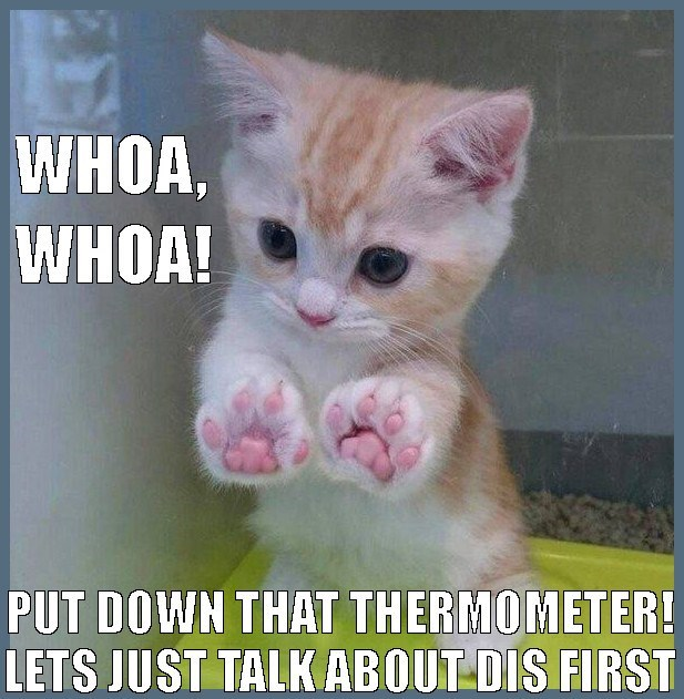 cat meme of kitty negotiating for you to put down that thermometer