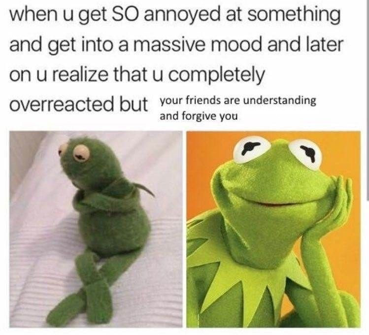 Kermit the frog meme about over reacting