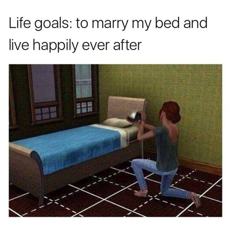 Funny meme with an image of a Sim proposing to what looks like a bed, joke about marrying a bed.