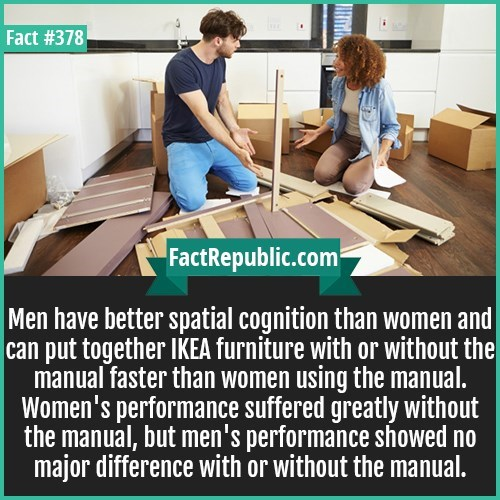 fun fact of Ikea furniture and woman VS men putting it together without the manual
