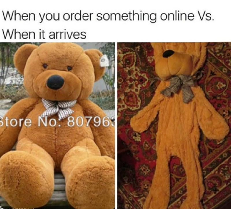 Stuffed toy - When you order something online Vs. When it arrives tore No. 80796