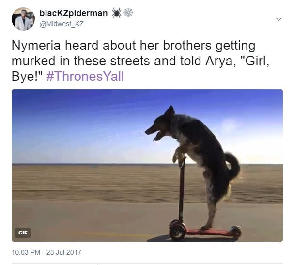 Dog standing on a scooter tweeted as Nyrmeria heard about her brothers getting murked by Starks and was all bye girl