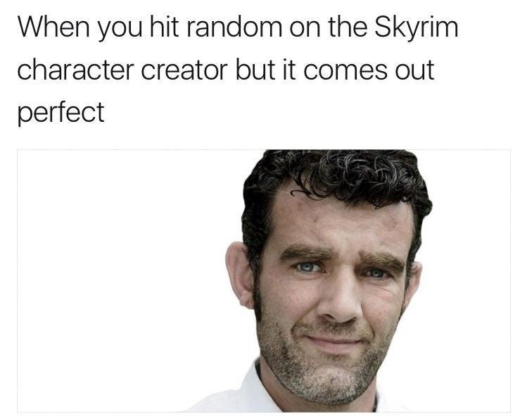 Meme about that feeling when you hit random on the skyrim character creator but it comes out perfect.