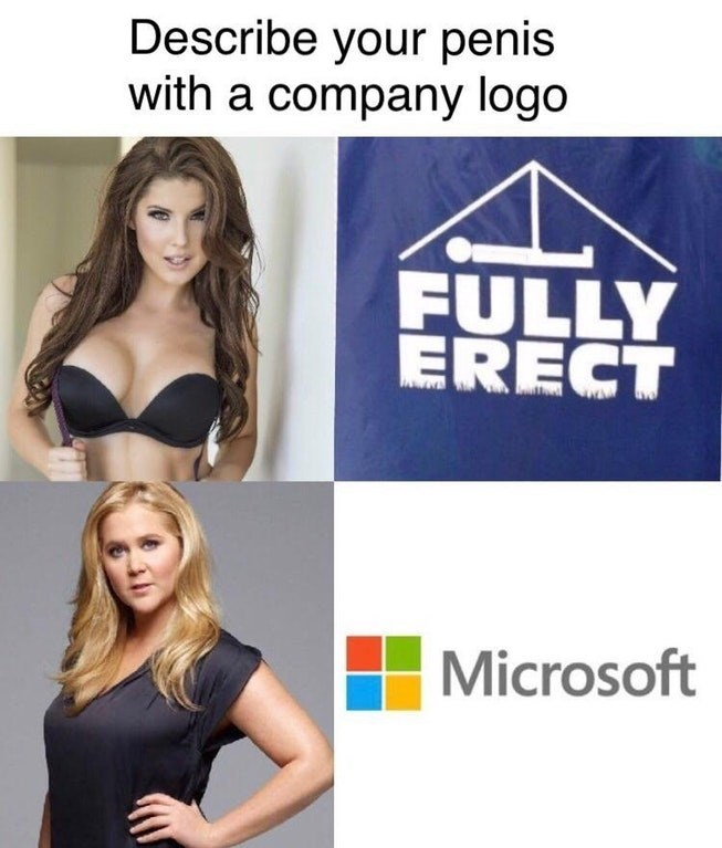Dank meme of how to describe yourself with company logo, sort of.