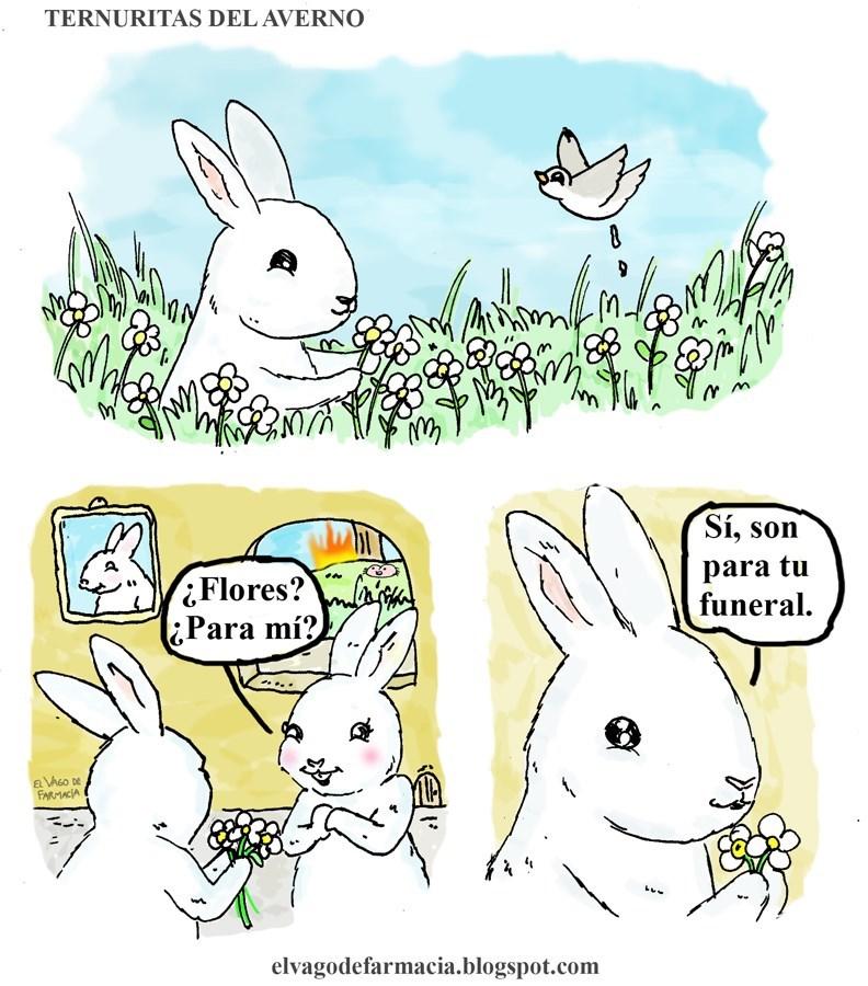 flores para mi si para tu funeral vineta