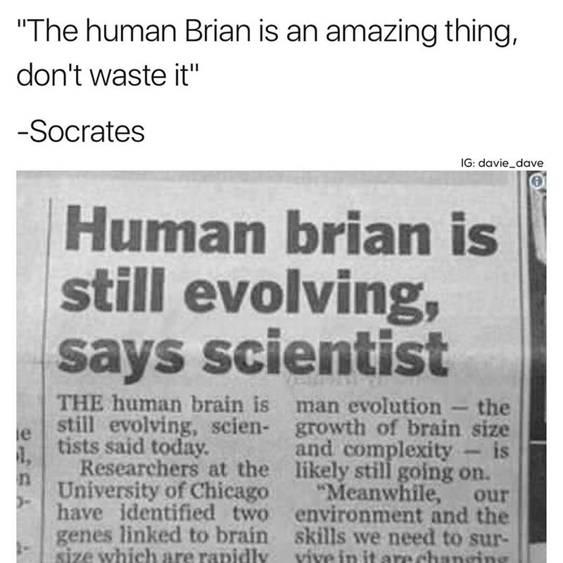 Funny meme where there's a typo in an article about the brain always evolving.