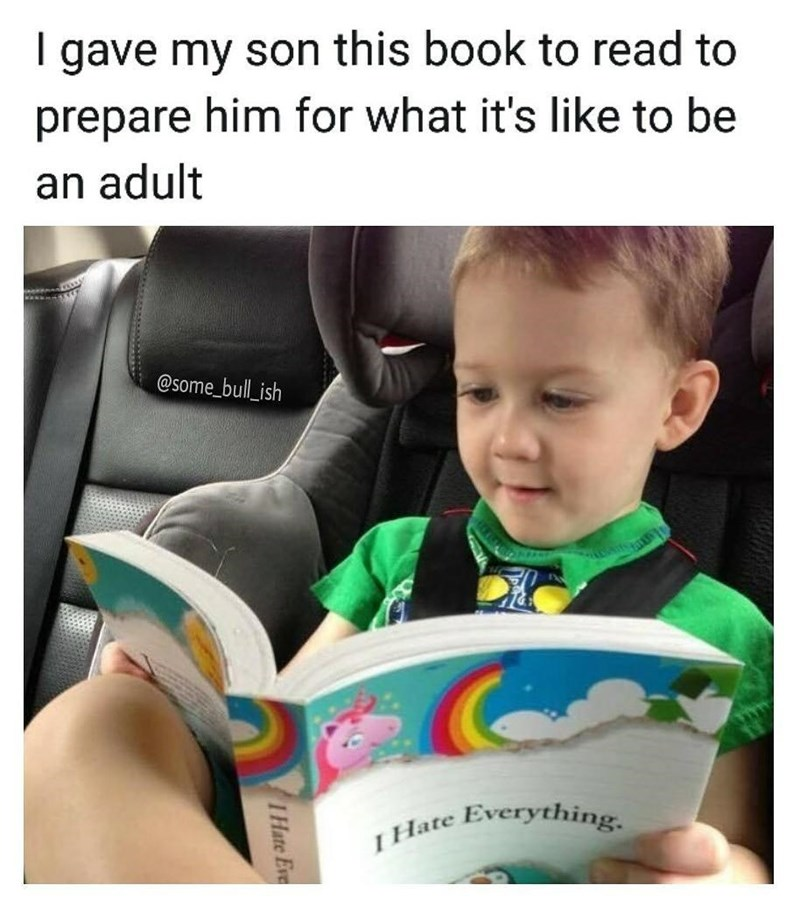 "Funny parenting meme about giving a kid a book to prepare for what it's like to be an adult, book is called ""i hate everything."""