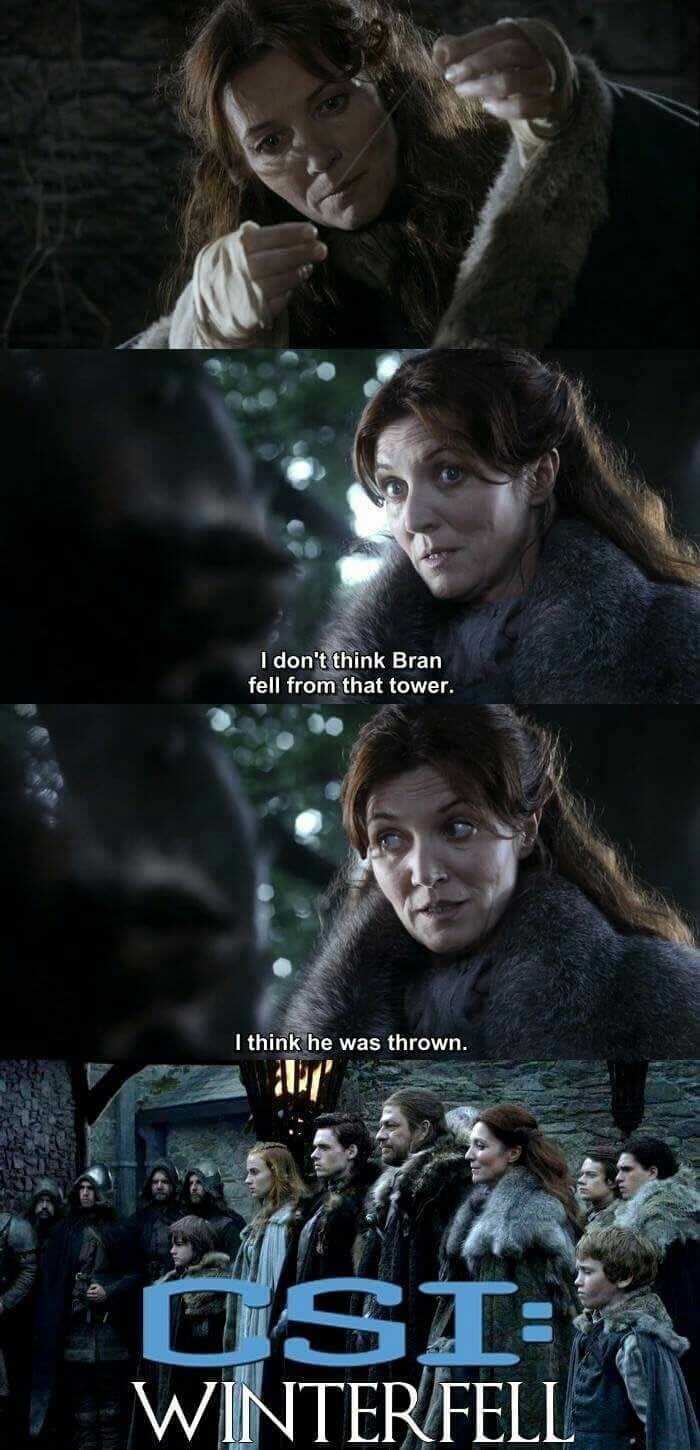 Funny meme about a pretend version of CSI called CSI winterfell.