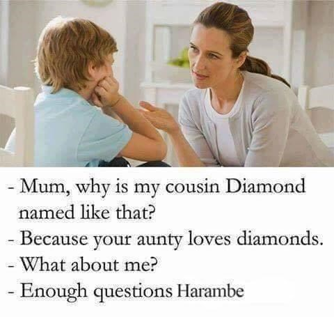 Facial expression - - Mum, why is my cousin Diamond named like that? - Because your aunty loves diamonds What about me? -Enough questions Harambe