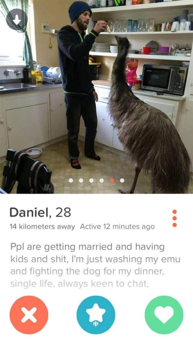 Flightless bird - Daniel, 28 14 kilometers away Active 12 minutes ago Ppl are getting married and having kids and shit, I'm just washing my emu and fighting the dog for my dinner, single life, always keen to chat, X