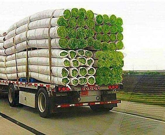 Funny picture of truck carrying massive 'logs' of grass that look like huge joints.