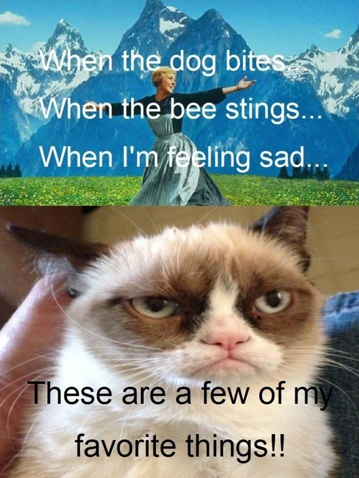 Cat - When the dog bites When the bee stings... When I'm feeling sad... These are a few of my favorite things!!