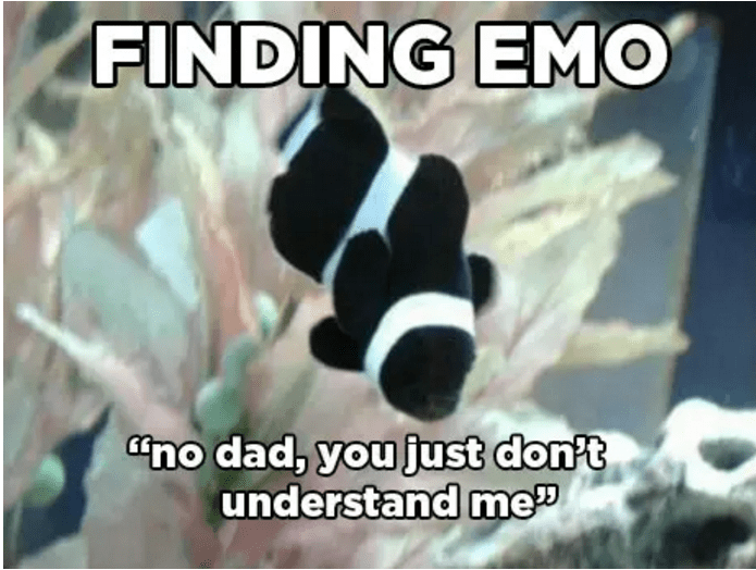 anemone fish - FINDING EMO no dad, you just don't understand me