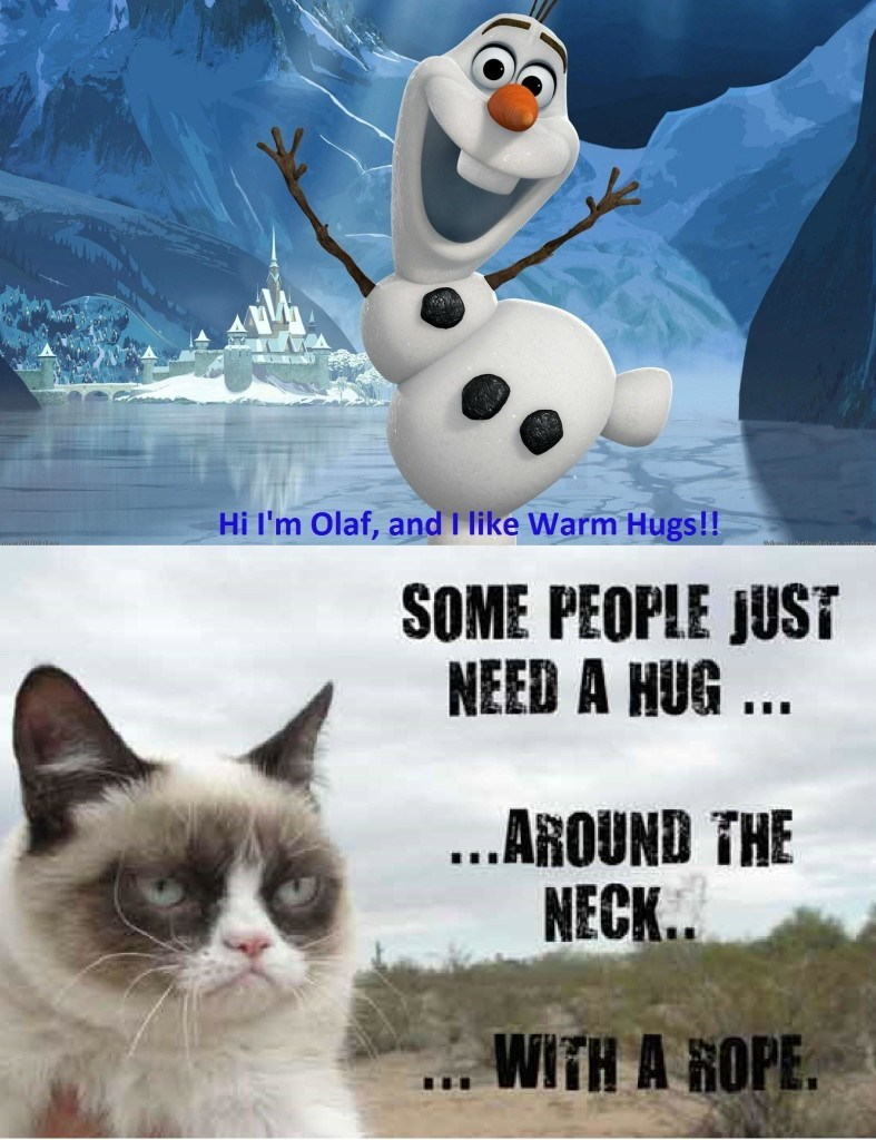 Cat - Hi I'm Olaf, and I like Warm Hugs!! SOME PEOPLE JUST NEED A HUG. ..AROUND THE NECK. WITH A HOPE.