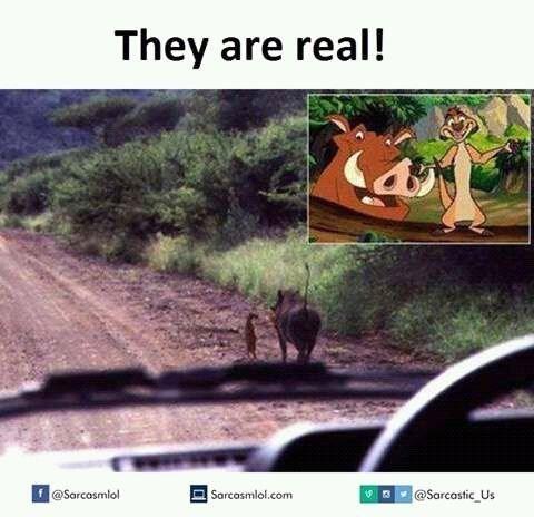 Adaptation - They are real! f@Sarcasmlol @Sarcastic Us Sarcasmlol.com