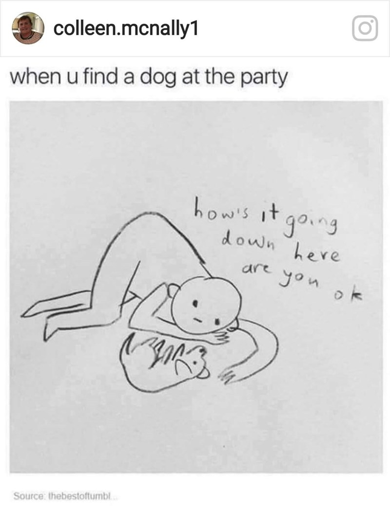 webcomic about how it feels when you find a dog at a party.