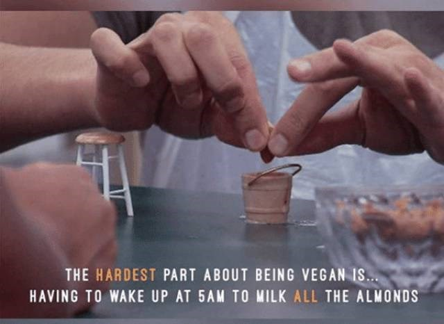 vegan meme about needing to wake up and milk almonds