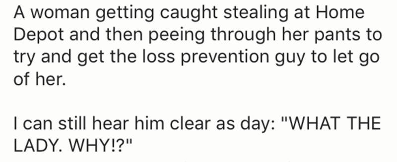 """Text - A woman getting caught stealing at Home Depot and then peeing through her pants to try and get the loss prevention guy to let go of her. I can still hear him clear as day: """"WHAT THE LADY. WHY!?""""."""