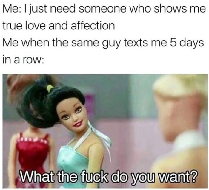 Barbie meme about wanting someone to treat you a certain way but also making sure nobody ever treats you that way.